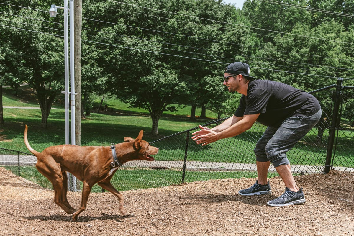 Evolve Companies Dog Park Knoxville