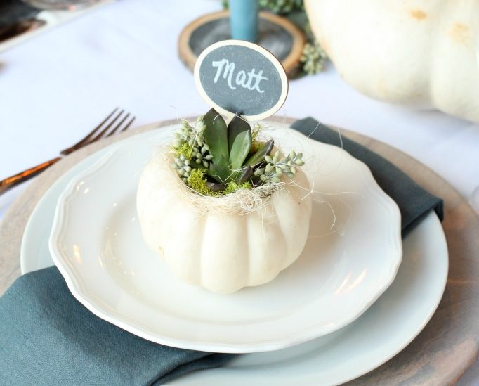 pumpkin-succulent-placeholder
