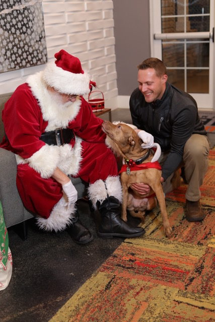 7 nye party decoration ideas santa with guy and dog