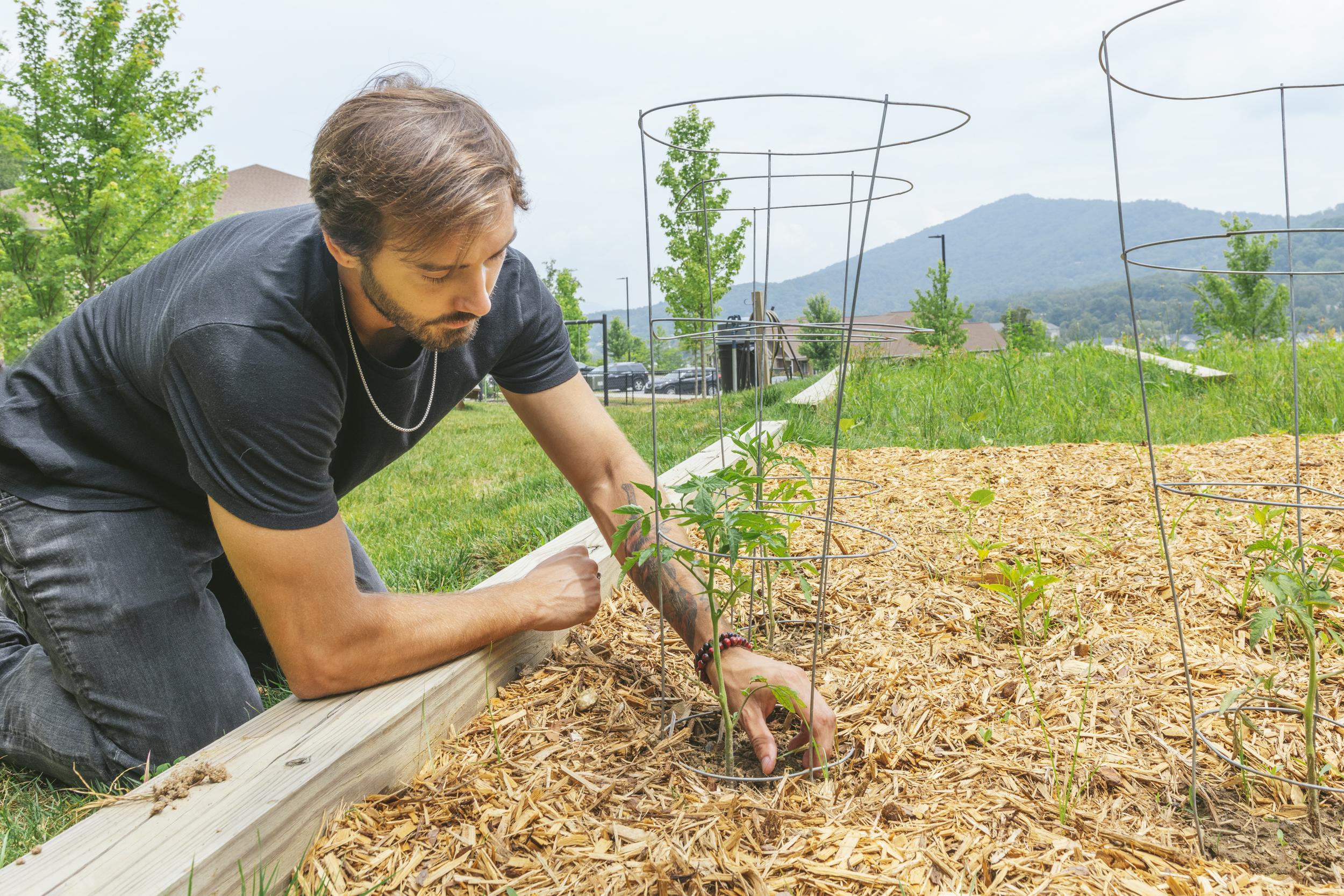 guy gardening in outdoor garden
