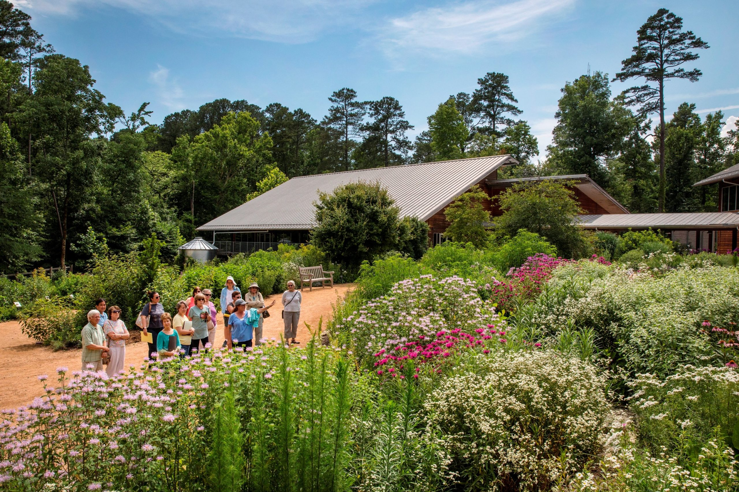 nc botanical garden evolve blog road trip spots