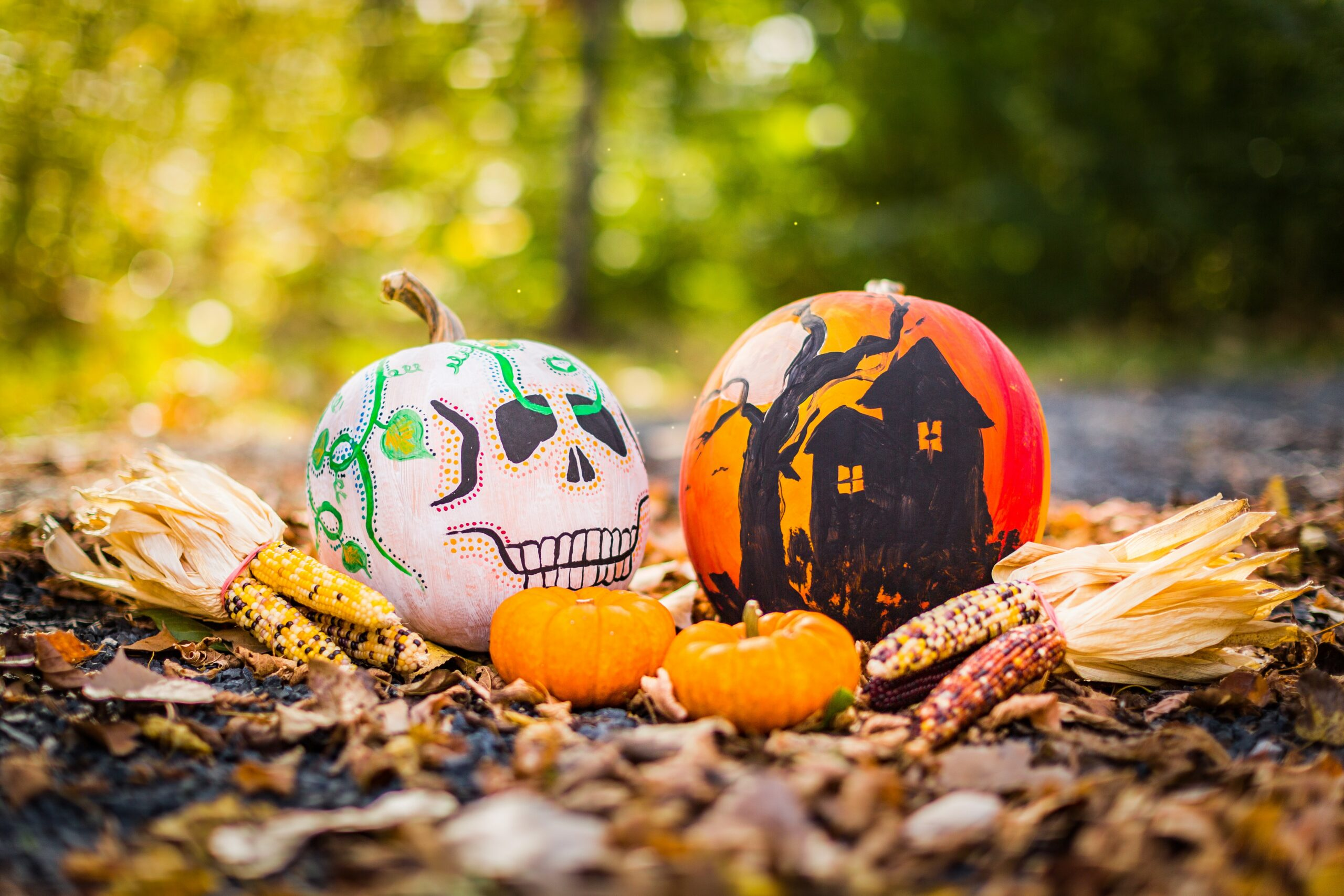 painted pumpkins celebrate halloween at home evolve blog