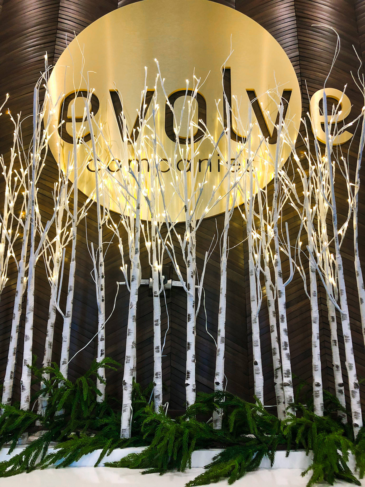 evolve sign with christmas decor