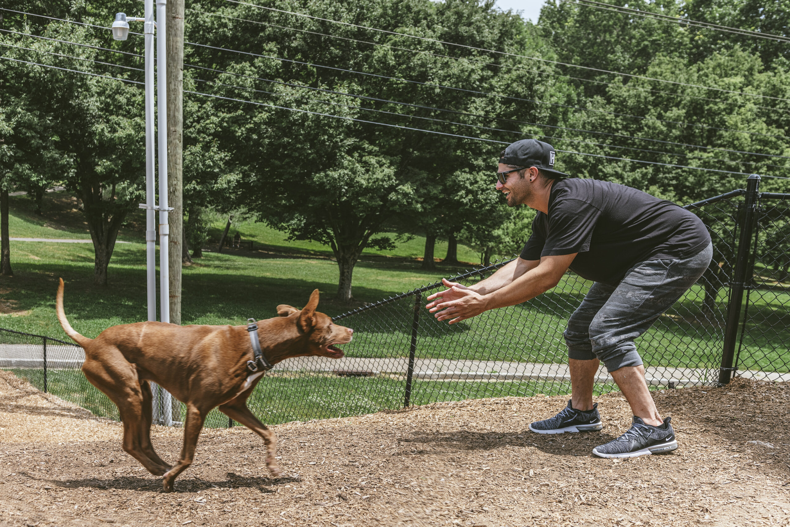 guy playing with dog outdoors dog park evolve